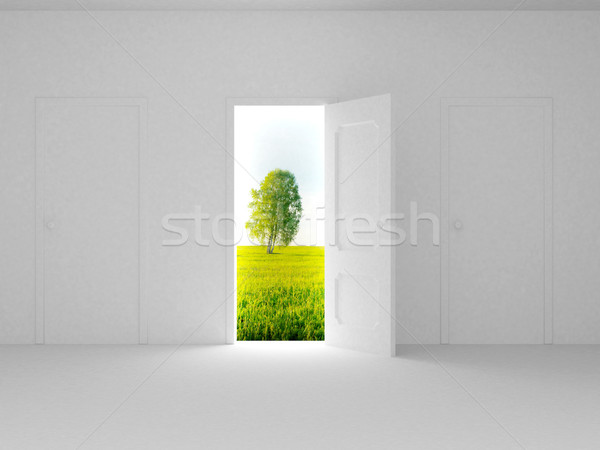 Landscape behind the open door. 3D image Stock photo © ISerg
