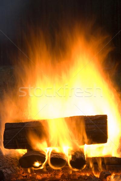şenlik ateşi ateşli soyutlama doku doğa ışık Stok fotoğraf © ISerg