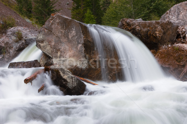 Hegy folyó gyors folyam víz erdő Stock fotó © ISerg