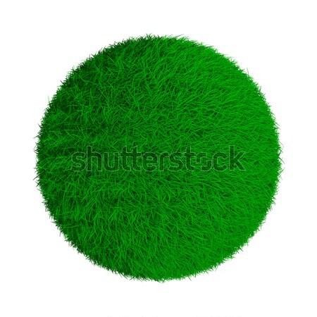 Résumé vert herbeux balle isolé 3D Photo stock © ISerg