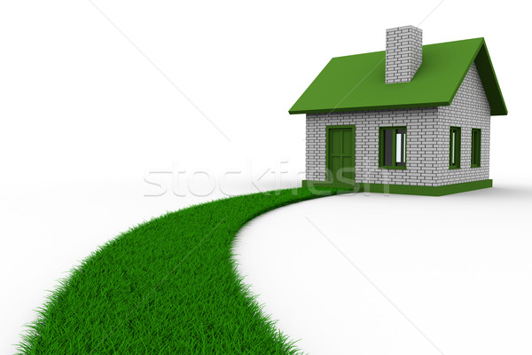Road to house from grass. Isolated 3D image Stock photo © ISerg