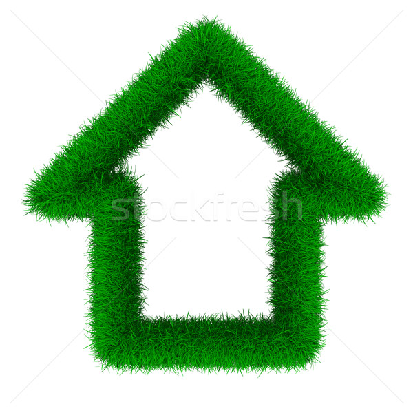 house from grass. Isolated 3D image Stock photo © ISerg