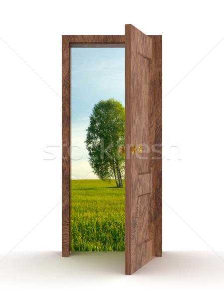 Stock fotó: Tájkép · mögött · nyitott · ajtó · 3D · kép · fa