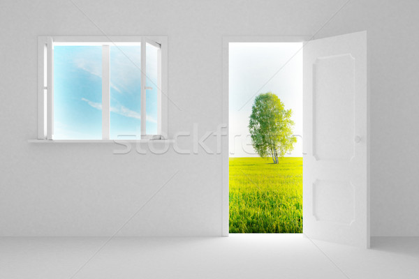 Landscape behind the open door and window. 3D image Stock photo © ISerg