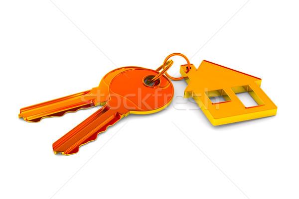 Dois teclas bugiganga casa branco isolado Foto stock © ISerg