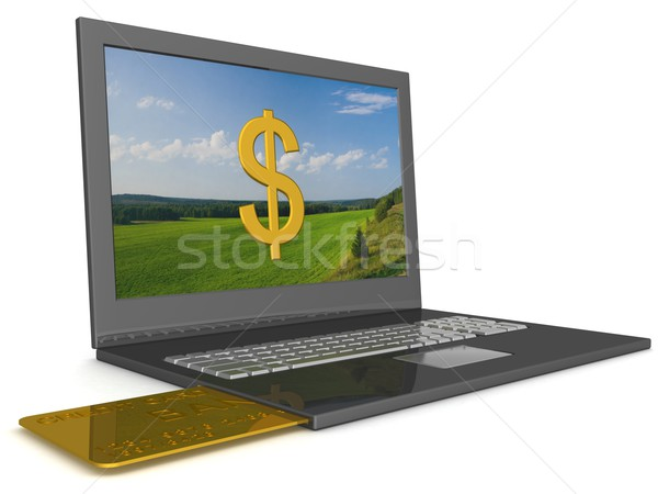Opel laptop with credit-card. 3D image. Stock photo © ISerg