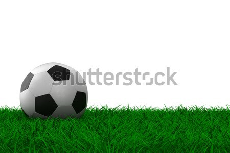 Stock photo: soccer ball on grass. Isolated 3D image