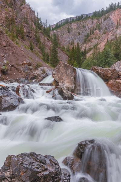 mountain river. fast stream water. Russia Altai Stock photo © ISerg
