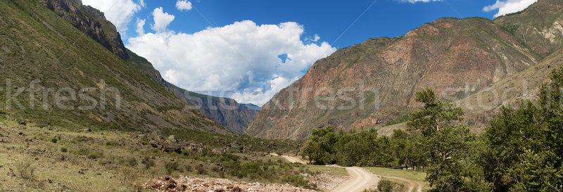 Altai mountains. Summer landscape. Russia Stock photo © ISerg