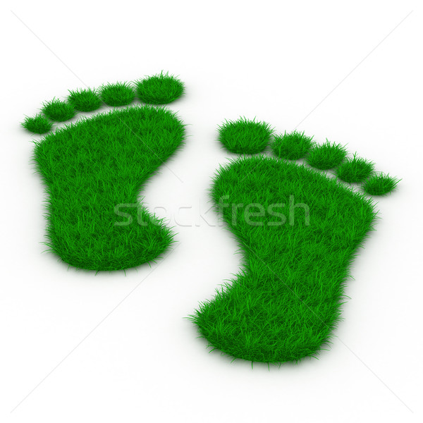 Trace foot from grass. Isolated 3D image Stock photo © ISerg
