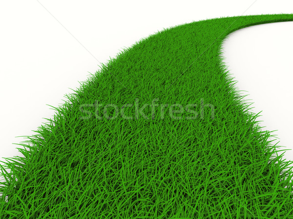 road from grass on white. Isolated 3D image Stock photo © ISerg