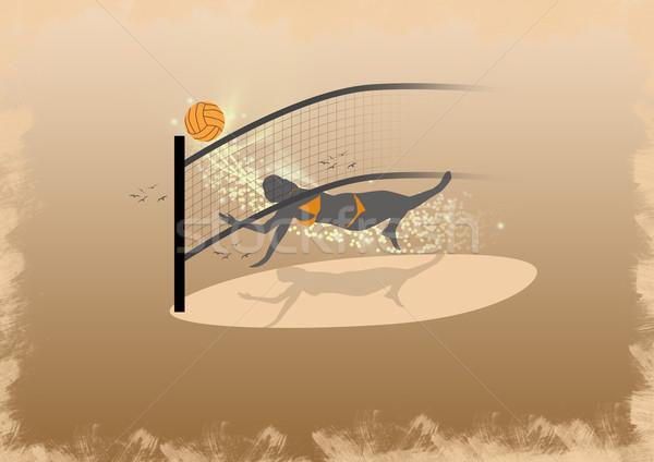 Volleybal ruimte sport lichaam web bal Stockfoto © IstONE_hun