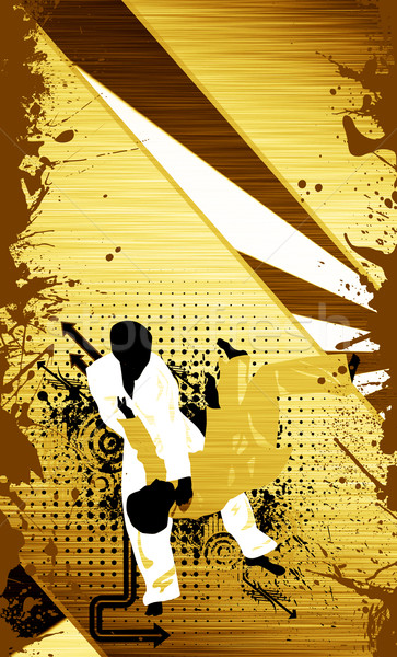 Dzsúdó sport poszter gyufa űr sportok Stock fotó © IstONE_hun
