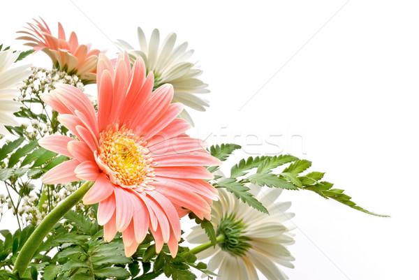цветочный элегантный цветы свадьба закрывается Сток-фото © italianestro