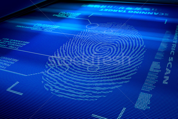 identification system interface Stock photo © italianestro