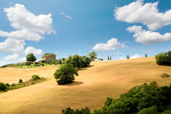 tuscany landscape Stock photo © italianestro