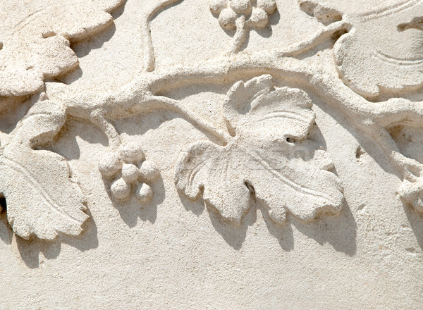 grapevine bas-relief Stock photo © italianestro