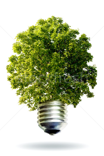 Stock photo: renewable energy concept