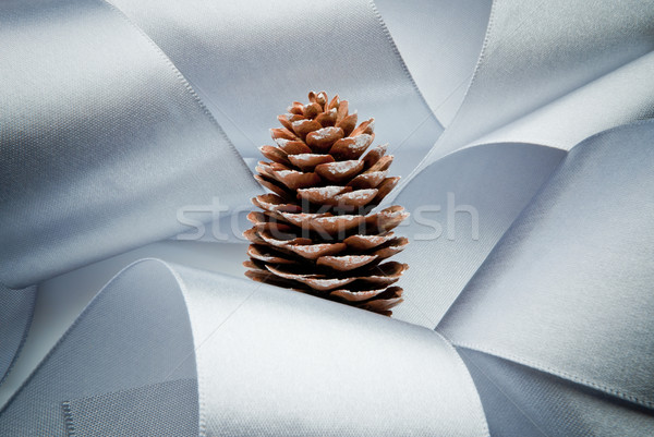 visionary christmas Stock photo © italianestro