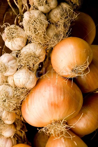 Cipolla aglio autunno mangiare cuoco Foto d'archivio © italianestro