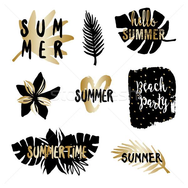 Summer Design Elements Stock photo © ivaleksa