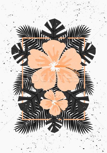 Ebegümeci çiçekler palmiye yaprağı dizayn pastel turuncu Stok fotoğraf © ivaleksa