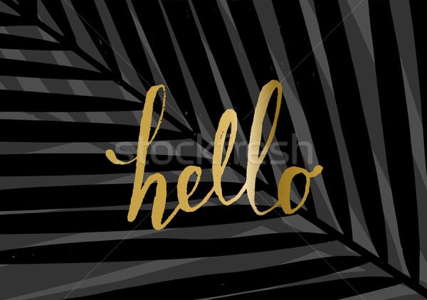 Hallo modernen stylish Design Plakat Stock foto © ivaleksa