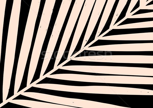 Foglia di palma poster design silhouette pastello rosa Foto d'archivio © ivaleksa