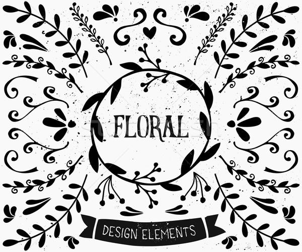 Floral Design Elements Collection Stock photo © ivaleksa