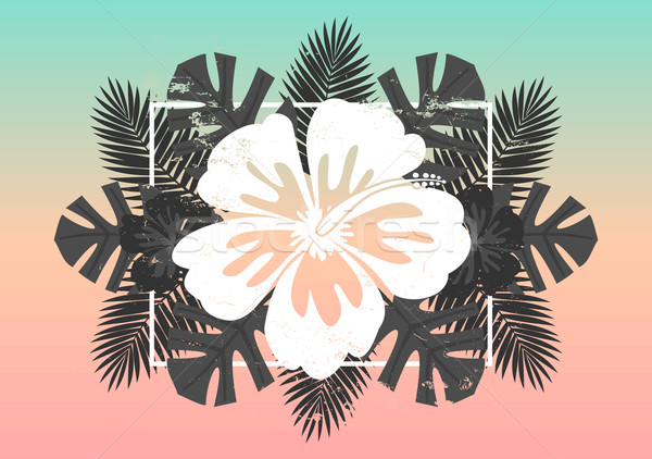 Hibiscus Flower and Palm Leaves Design Stock photo © ivaleksa