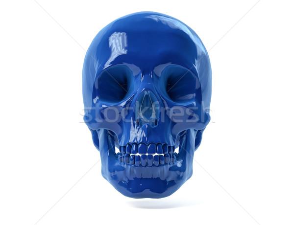 3D Isolated Human Skull. Stock photo © IvanC7