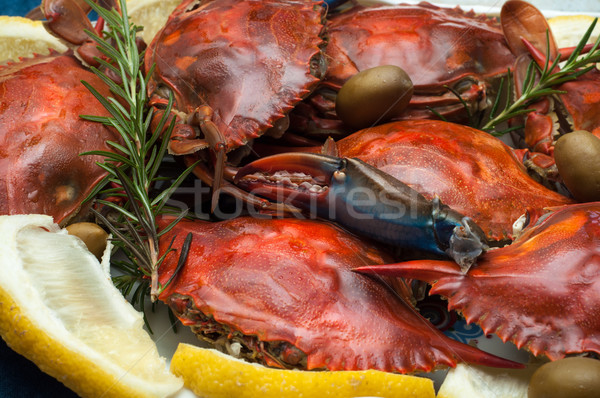 Dish with cooked crabs Stock photo © IvicaNS