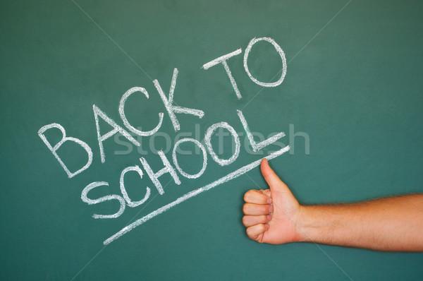 Terug naar school schoolbord groene krijt Blackboard geschreven Stockfoto © IvicaNS