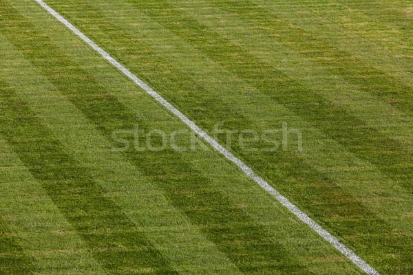 Natuurlijke groen gras voetbalveld afbeelding gras Stockfoto © IvicaNS