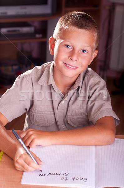 Vissza az iskolába portré fiatal srác arc otthon fiú Stock fotó © IvicaNS
