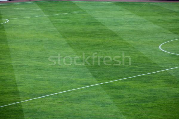 Listrado padrão gramíneo campo de futebol vibrante Foto stock © IvicaNS