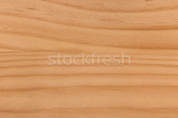 grunge pine wood pattern texture Stock photo © ivo_13