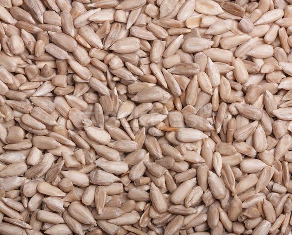 Sunflower seeds background. Peeled Stock photo © ivo_13