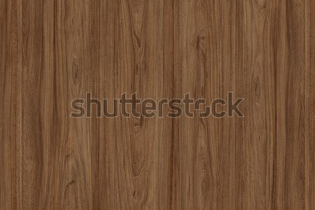 Dark wood texture. Abstract background Stock photo © ivo_13