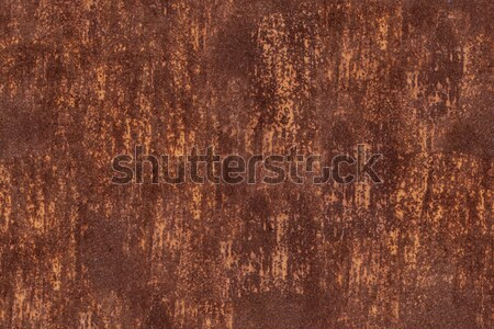 Metal rust background, header panorama website old metal dirty rusty. Stock photo © ivo_13