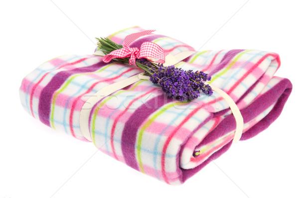 Boeket lavendel picknickdeken paars witte bloemen Stockfoto © ivonnewierink