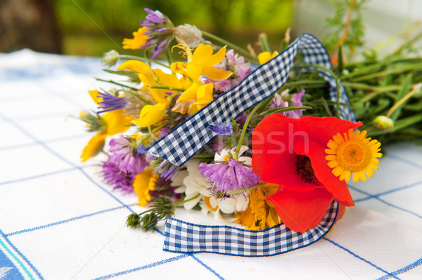Bouquet wild flowers Stock photo © ivonnewierink