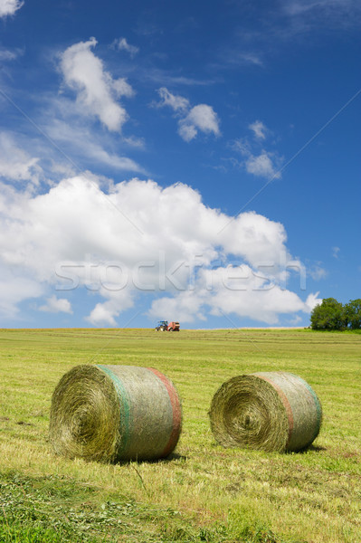 Harvesting rolls hay Stock photo © ivonnewierink
