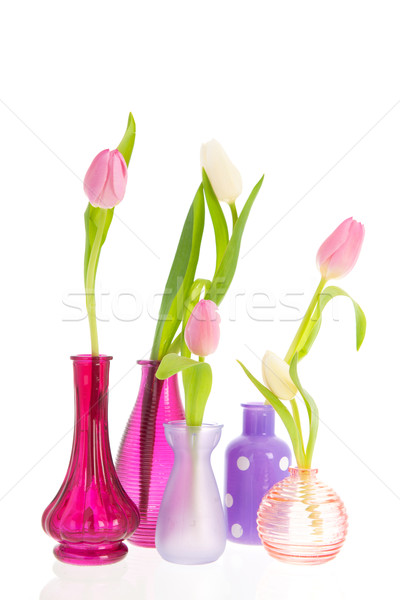 Photo stock: Tulipes · rose · blanche · peu · coloré · vase