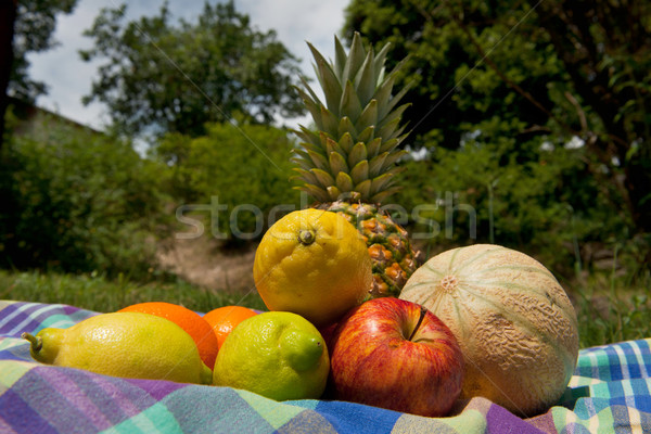 Fraîches fruits d'été extérieur alimentaire herbe arbres Photo stock © ivonnewierink