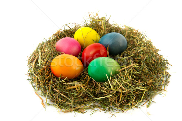 Colorful nest easter eggs Stock photo © ivonnewierink