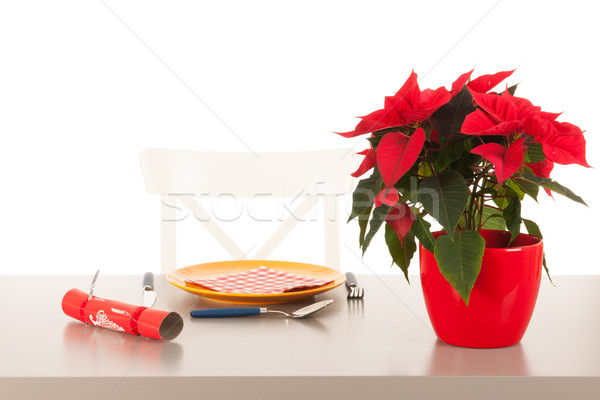 Alone with Christmas Stock photo © ivonnewierink