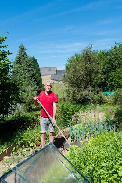 Man werken plantaardige schoffel tuin handen Stockfoto © ivonnewierink