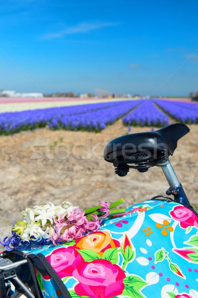 Dutch landscape with bike flower bulbs Stock photo © ivonnewierink
