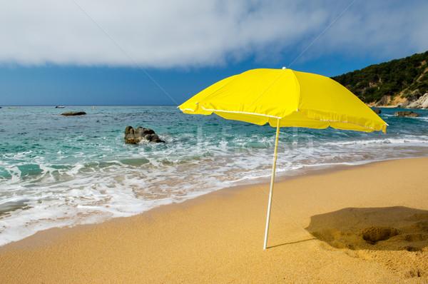 Sarı güneş şemsiyesi plaj yaz deniz seyahat Stok fotoğraf © ivonnewierink